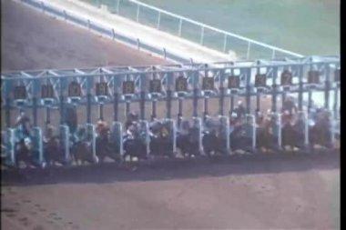Hästar kommer från start grinden vid ras spår — Stockvideo