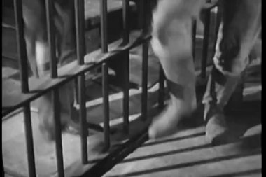 Low section of two stomping feet in prison — Stock Video