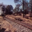 Steam locomotive passing through countryside — Stock Video