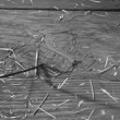 Close-up of person drawing number 8 on dirt floor with stick — Vídeo Stock