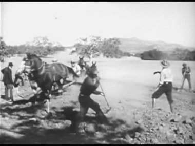 Farmers working the land with plough horses — Vídeo de stock