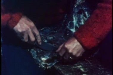 Medium sköt händer med kniv rengöring stommen — Stockvideo