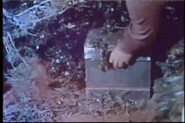 Man removing hidden ammunition box in bushes — Stock Video