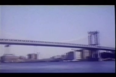 View of Brooklyn and Manhattan bridges — Стоковое видео