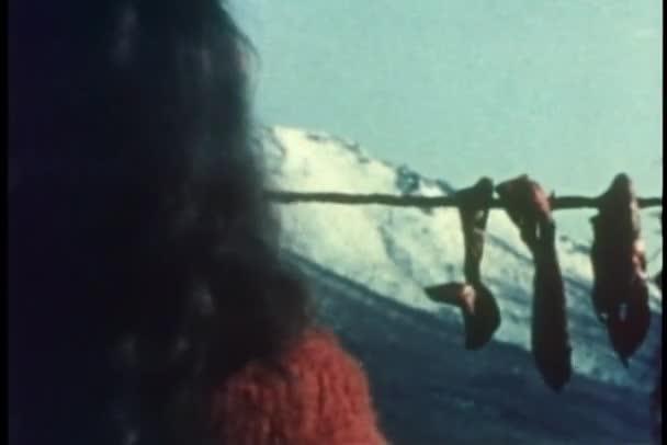 Vue arrière du femme accrochant les lanières de viande de caribou pour sécher — Vidéo