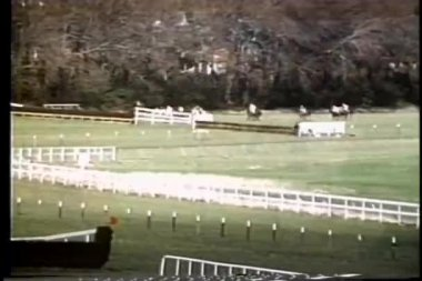 Long shot of horse falling during steeplechase race — Stock Video