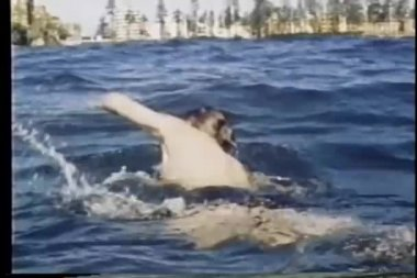 Man swimming in ocean towards beach — Stock Video