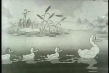 Szeroko strzał kaczka rodziny pływanie na staw — Wideo stockowe