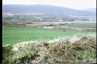 宽射击的男孩跑过开放领域 — 图库视频影像