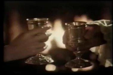 A romantic toast in front of fireplace — Stock Video #26665629