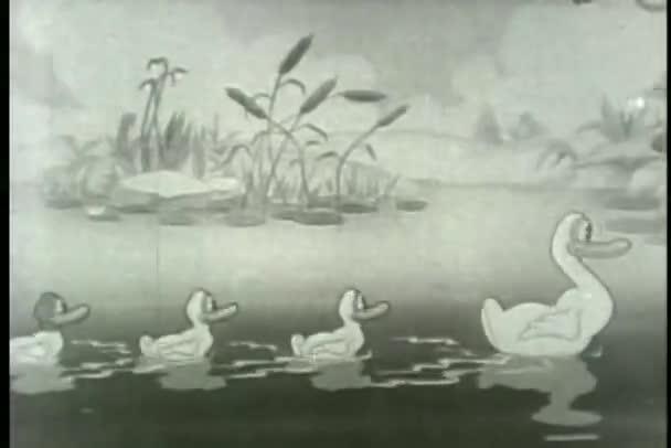 Famille large tir canard nage sur l'étang — Vidéo