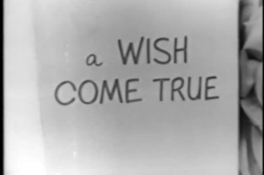 Text in book - a wish come true — Vídeo Stock