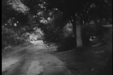 Car turning into long driveway in the rain — Wideo stockowe