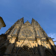 St. Vitus Cathedral in Prague — Stock Photo #12592960