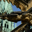 A gargoyle on the Cathedral — Stockfoto