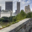 Stock Photo: Central Park Gapstow bridge