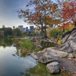 Stock Photo: Central Park lake