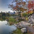 Central Park the lake — Stock Photo #12566006