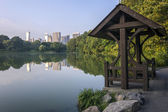 Central Park at the lake — Stock Photo