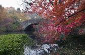 Gapstow bridge - Central Park — Stock Photo