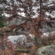 Harriman State Park — Stock Photo
