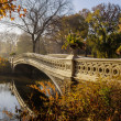 Постер, плакат: Bow bridge