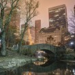 Gapstow bridge Central Park, New York City — Stock Photo