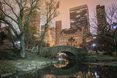 Gapstow bridge Central Park, New York City — Stock fotografie