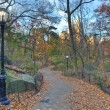 Stock Photo: Central Park late autumn