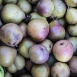 ������, ������: Seckel pear