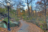 Central Park late autumn — Stock Photo