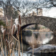 Gapstow bridge Central Park, New York City - Stock Photo