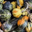 Gourds for sale in Market — Stock Photo #19037897