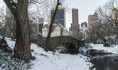 Central Park, New York City — Stock Photo