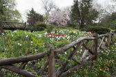 Shakespeare gardens — Stock Photo