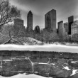 Central Park, New York City Gapstow bridge - Stock Photo