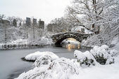 Central Park, New York City — Stok fotoğraf