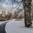 Stock Photo: Central Park, New York City winter