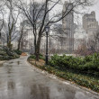 Central Park, New York City after rain storm — Stock Photo #22262399