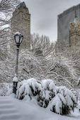 Central Park, New York City blizzard — Stock Photo