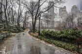 Central Park, New York City after rain storm — Stock Photo