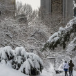 Stock Photo: Central Park, New York City blizzard