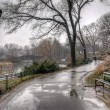 Central Park, New York City after rain storm — Stock Photo #23545815