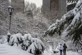 Central park, nueva york blizzard — Foto de Stock