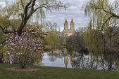 Central Park, New York City at the lake — Stok fotoğraf