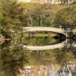Central Park, New York City bow bridge - Stock Photo