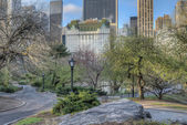 Central Park, New York City — Stock fotografie
