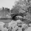 Stock Photo: Central Park, New York City Gapstow bridge