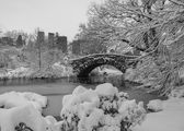 Central Park, New York City Gapstow bridge — Foto Stock