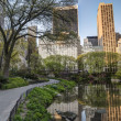 Stock Photo: Spring in Central Park